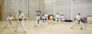 Уроки каратэ для начинающих